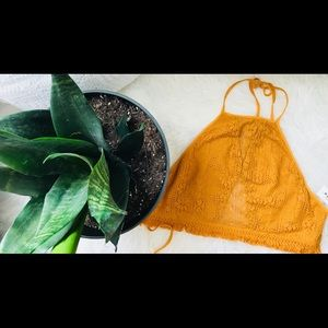 NWT Pac Sun Crochet Halter tie backless crop top